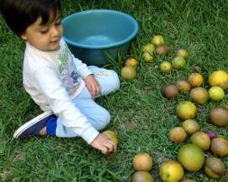Ahora, a jugar con las naranjas